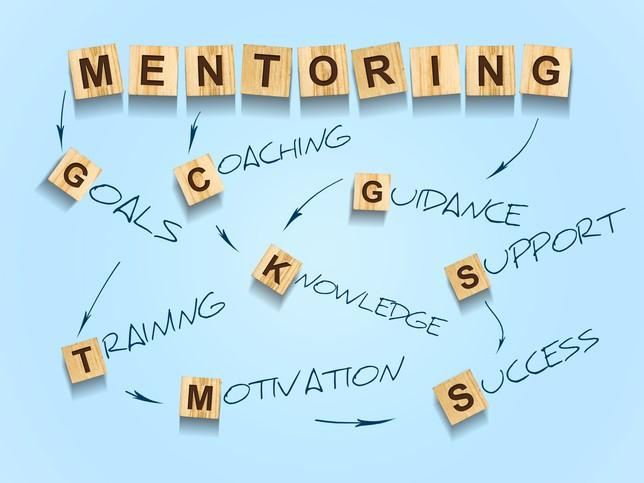 The importance of a structured mentorship programme for ECRs cannot be overstated