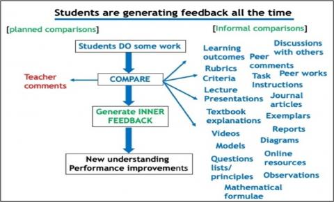 Sources of student feedback and comparison for learning