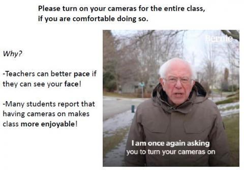 Bernie Sanders says keep your zoom cameras on